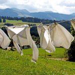 所有する衣服の枚数は洗濯の頻度で決まる。